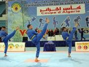[Fotos] Ronda final de la Copa Vovinam (Viet Vo Dao) en Argelia