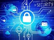 Ley de Seguridad Cibernética garantizará transparencia y equidad para individuos y colectivos