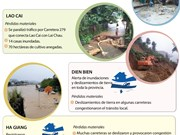 [Infografía] Grandes pérdidas causadas por inundaciones en Vietnam