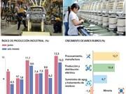 [Infografía] Producción industrial de Vietnam creción 10,5 por ciento en primer semestre de 2018