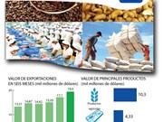 [Infografía] Exportaciones agrícolas de Vietnam alcanzan 19 mil millones de dólares
