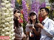[Foto] Cultivo de orquídea de alta tecnología en provincia vietnamita de Lam Dong