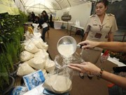 Aprueba gobierno tailandés programa de subvención del precio de arroz