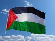 Vietnam afirma solidaridad con el pueblo de Palestina