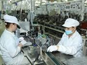 Grandes empresas de Suecia buscan oportunidades de cooperación en Vietnam