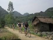 Pueblo apacible Hai Phong atrae turistas