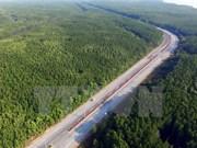 Ciudad Ho Chi Minh invierte millones de dólares para protección forestal