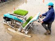 JICA asiste a desarrollo rural en provincia de Vietnam