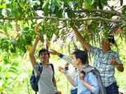 UNESCO recomienda a ciudad vietnamita desarrollar turismo comunitario