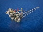 Empresa petrolera de Vietnam impulsa el suministro de servicios en extranjero
