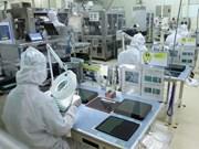 Vietnam carece del personal calificado en tecnología informática