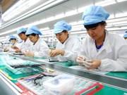 Isla de Cat Hai, destino atractivo para los inversores