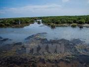 Ramsar, hogar de especies marinas raras