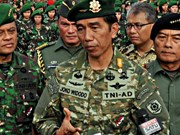 Indonesia suspende cooperación militar con Australia