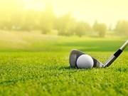 Golfistas vietnamitas en ultramar compiten en torneo en Thanh Hoa
