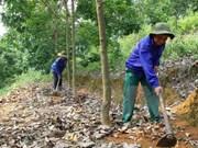 Vietnam ingresa 1,67 millones de dólares por exportaciones caucheras
