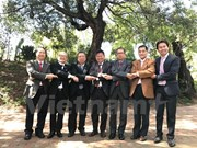 Preparan actividades por 50 aniversario de fundación de ASEAN