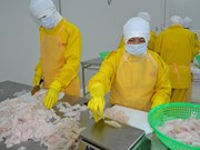En funcionamiento fábrica de procesamiento de alimentos en Ben Tre