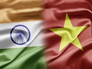 Vietnam reconoce contribuciones de organización india a nexos bilaterales