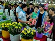 Abren en Ciudad Ho Chi Minh Festival de las Flores