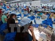 TLC entre Vietnam y UEE: importantes oportunidades