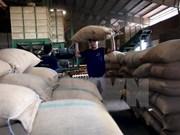 Exportaciones agrícolas de Vietnam disminuyen en enero de 2017