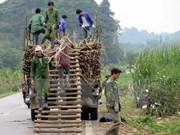 Vietnam ratifica compromiso con reducción sostenible de pobreza