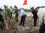 Mitin en Vietnam por Día Mundial de los Humedales