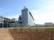 Fábrica vietnamita exporta primeros lotes del hidróxido de aluminio al exterior