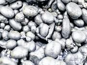 Filipinas: Cierre de 23 minas afectará al desarrollo económico