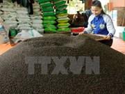 Pimienta, producto exportado clave de Vietnam en 2017