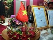 Pitahaya vietnamita presente en el Feria internacional de Berlín