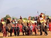Festival en provincia laosiana promueve la protección de elefantes