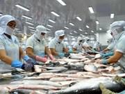 En tendencia alcista exportaciones de bagres de Vietnam