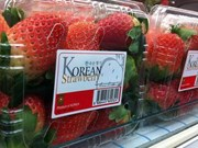 Importaciones de fresa sudcoreana a Vietnam enfrentan nuevas normas