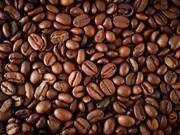 Rebaja de arancel de Brasil ofrece oportunidad a sector cafetero vietnamita