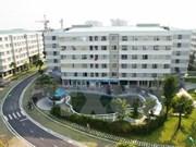 Hanoi espera colaborar con Irlanda en educación y construcción urbana