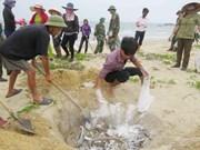 Revisan préstamos por impacto de incidente ambiental en provincias costeras de Vietn