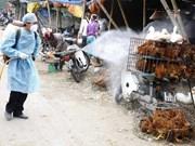 Vietnam acelera medidas preventivas contra gripe aviar H7N9