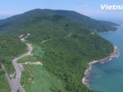 Montaña Son Tra declarada sitio turístico nacional de Vietnam