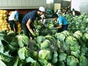 Vietnam aspira a tres mil millones de dólares por exportaciones de vegetales y fruta