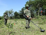 Vietnam y Estados Unidos trabajan para solucionar secuelas de la guerra
