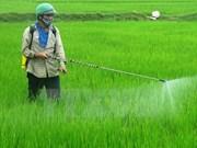 Aclaran nuevas regulaciones en sector agrícola vietnamita para empresas de EE.UU.