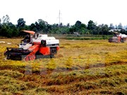 Inauguran Exposición internacional de agricultura en Vietnam