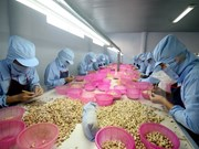 Ministros de ASEAN se comprometen a intensificar integración comercial