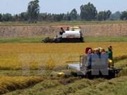 Tailandia cuenta con suficiente recursos hídricos para enfrentar sequía