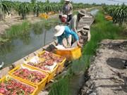 Exigen levantar la suspensión india de compra de productos vietnamitas