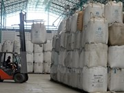 Indonesia exportará 50 mil toneladas de arroz a Malasia