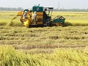 BAD pronostica crecimiento de 6,5 por ciento de economía vietnamita en 2017