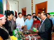 Vietnam estudia medidas para estimular desarrollo de medicina tradicional